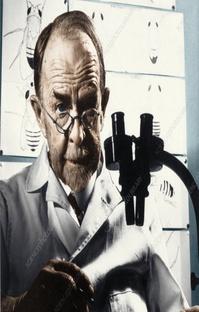 پادکست از اتاق مگس تا کشف ژن و جایزه ی نوبل!