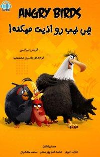 کتاب صوتی پرندگان خشمگین